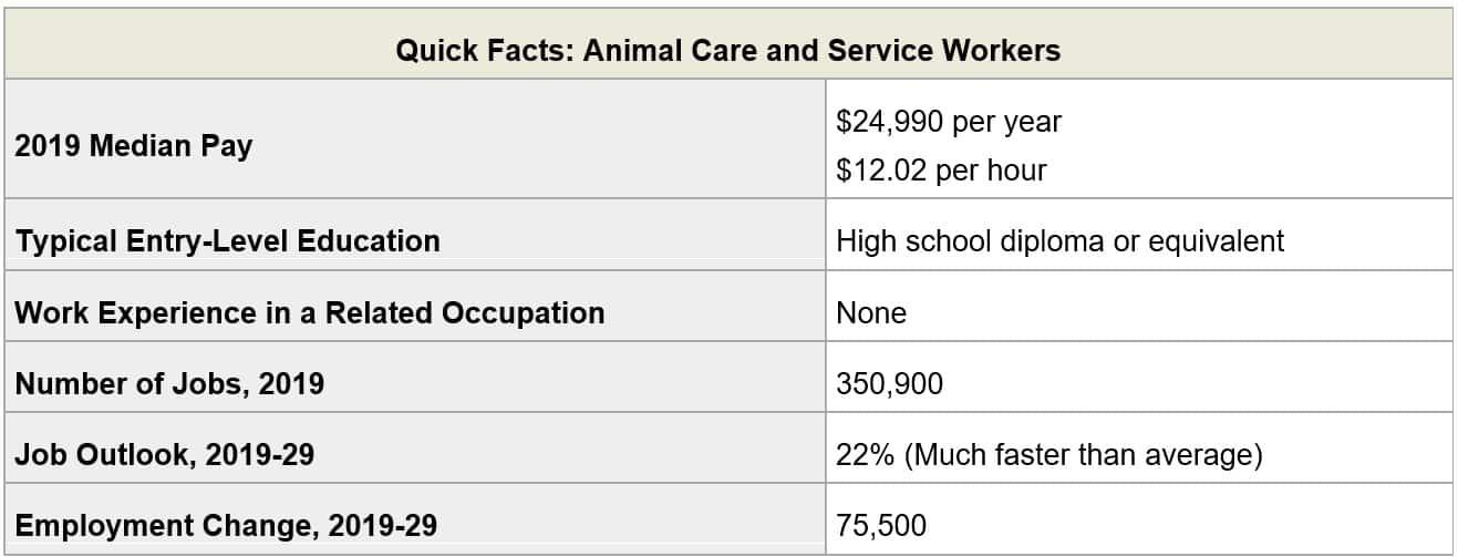 Pet Care Services Employment Trends